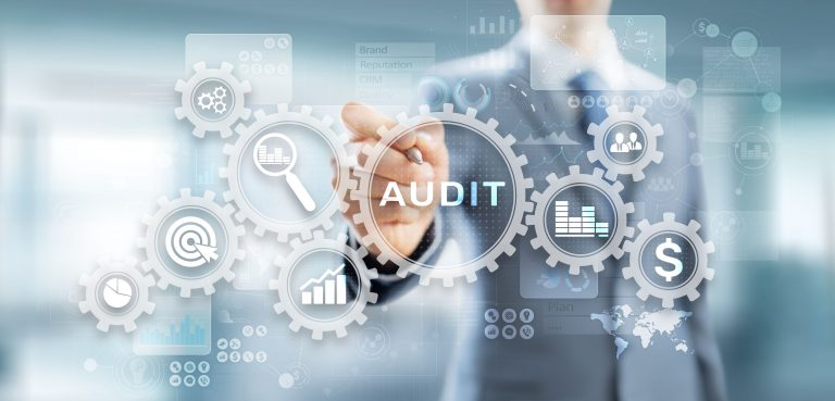 Audit Patricia Carneiro Agency